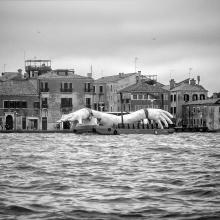 Biennale di Venezia - Un lunapark per intellettuali