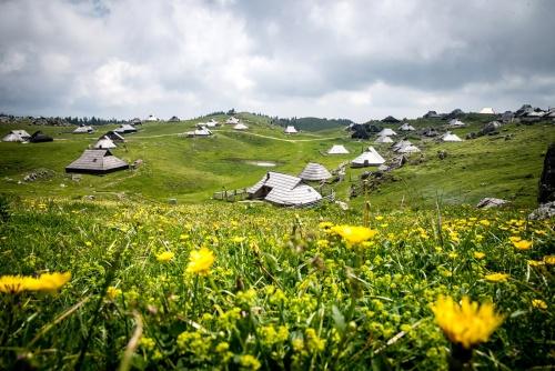 2017    Velika Planina - Slovenia - Shepherds village © Massimo Gorreri