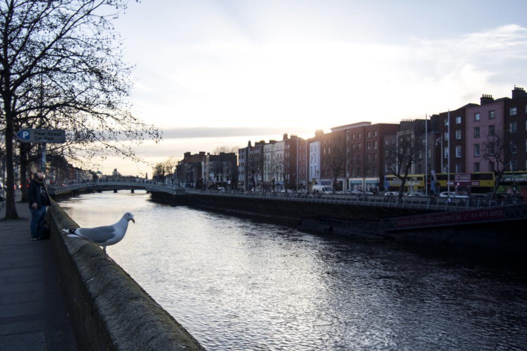 Glimpses of Dublin